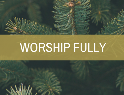 WORSHIP FULLY